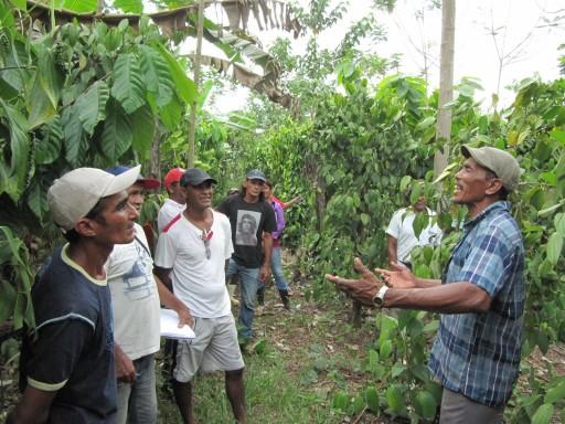 Curso de Formação em Agroecologia. MST Pará - IFPA Castanhal. Foto: Alan Tygel
