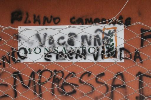 MPA ocupa Monsanto