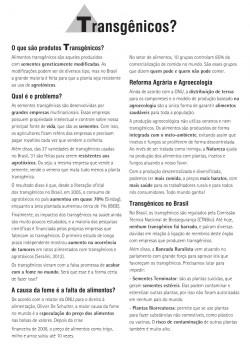panfleto-pagina1